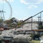 この春のよみうりランドは梅と桜の「お花見遊園地」に