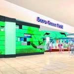 ソユーが木更津市にゲーム店とスケートリンクをオープン