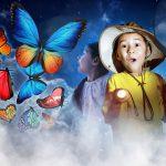 ハウステンボス「世界一美しい昆虫展」「光のナイトプール」を開催